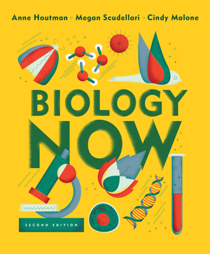 Test Bank for Biology Now 2nd Edition by Anne Houtman