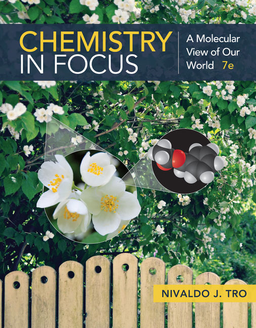 Solution Manual for Chemistry in Focus: A Molecular View of Our World