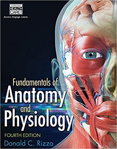 Solution Manual for Fundamentals of Anatomy and Physiology, 4th Edition, Dr. Donald C. Rizzo, ISBN-10: 1285174151, ISBN-13: 9781285174150