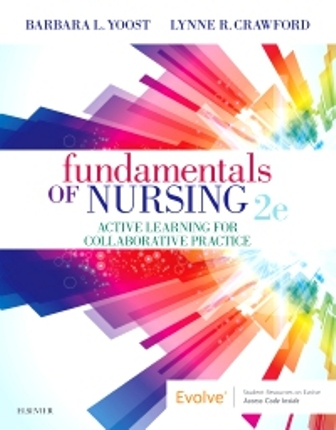 Test Bank for Fundamentals of Nursing 2nd Edition Yoost